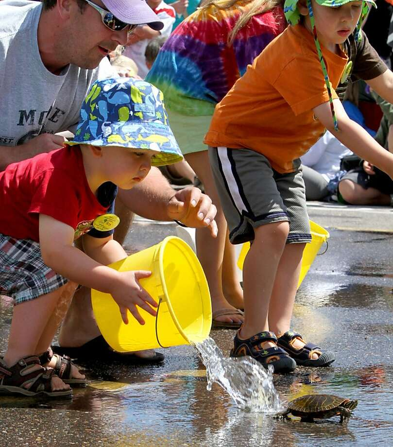 One way to get your turtle moving in the Nisswa (Minn.) Turtle Races is to create a 