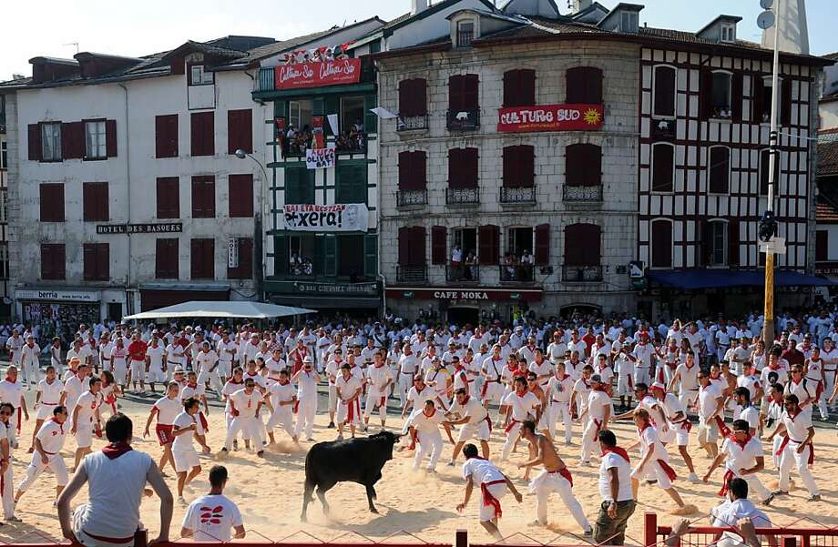 Fair fight?Dozens of red-scarfed runners taunt a bull during the 