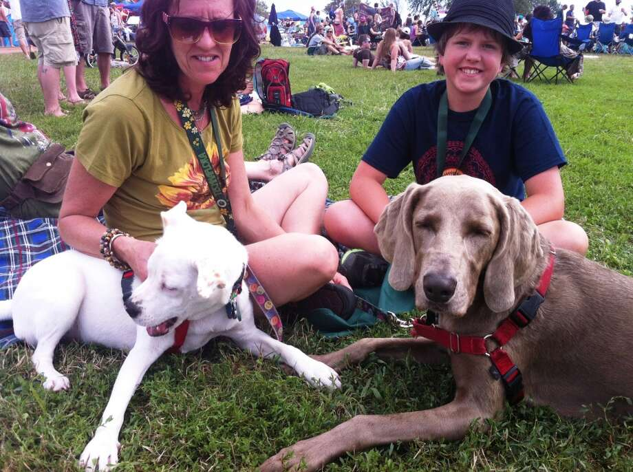 """DOG DAYS OF THE VIBES The Gathering of the Vibes is going to the dogs. Lilly, a 5-year-old weimaraner, and Kaia, a 9-month-old Pitbull mix, played as their owners, Melissa Gilbert and her son, 13-year-old Jacob, watched Railroad Earth perform at the Gathering of the Vibes Friday. Gilbert, of Cazenovia, N.Y., brought her hounds along for protection and companionship. """"It makes me feel more relaxed having them here, especially at night when we're in the camp,"""" she said. Gilbert said that Lilly is more standoffish, preferring to stick by """"the people she knows and loves,"""" while Kaia """"wants to play and be involved in everything."""" Kaia got a little feisty at one point, prompting Gilbert to practice a little discipline on the young pup. It was to be expected, though – it's Kaia's first year at the Gathering of the Vibes, and """"she's a little excited,"""" Gilbert said. Photo: Scott Gargan, Connecticut Post"""
