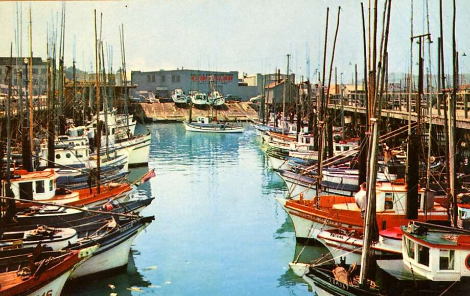 Vintage postcard showing fishing boats tied to the docks at Fisherman's wharf. Photo: Curt Teich Postcard Archives