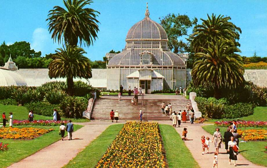 Vintage 1957 postcard showing an exterior view of the Conservatory in Golden Gate Park and the surrounding grounds. Lush gardens are visible as people walk around the grounds. Photo: Curt Teich Postcard Archives, Getty Images