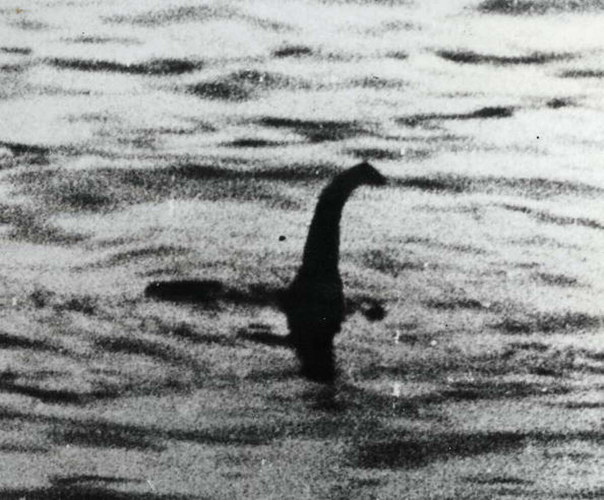 Loch Ness Monster: What can we say about the legendary monster from Scotland.