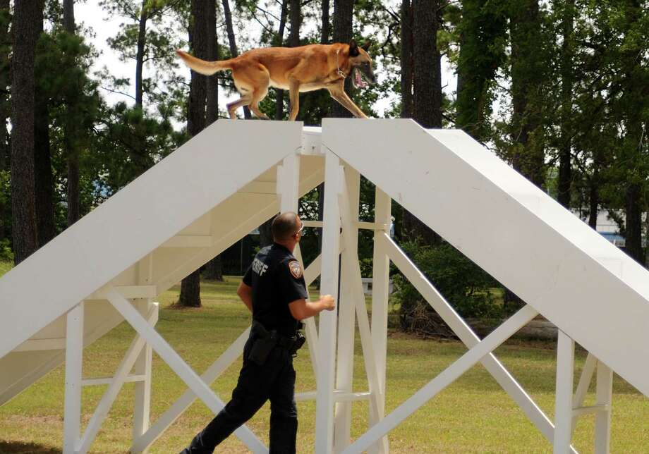 Harris County Sheriff's Deputy Shawn Brown and his K9 partner, Bret, demonstrate the obstacle course at the newly named Deputy Ron Hoyt K-9 Obstacle Training Course at the HCSO Academy, 2316 Atascocita Road in Humble. Photo: David Hopper, Freelance / freelance