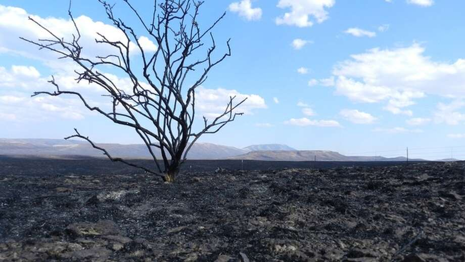 9. Long Draw Fire: Also in Oregon, this July 2012 fire was ignited by lightning that struck dry sagebrush. The blaze scorched 557,600 acres in the southeast region of the state, spreading to Oregon's borders with Nevada and Idaho. Though the fire persisted for eight days, more than 300,000 acres were burned in one night of high winds. Photo: Getty
