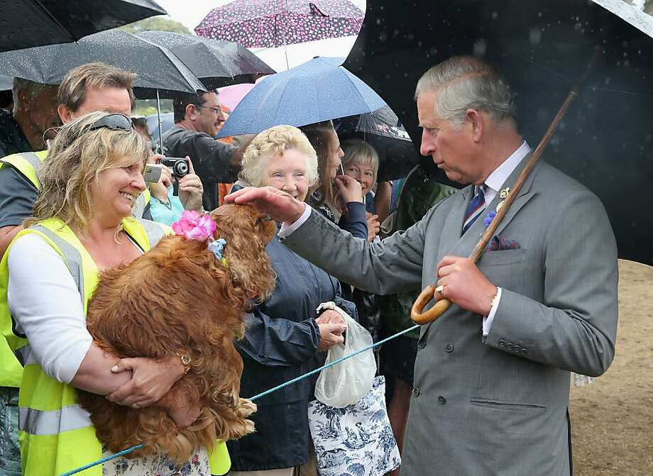 I dub thee Sir Cocker of Spaniel: Prince Charles practices for when he'll be king during a visit to the Sandringham Flower Show in King's Lynn, 