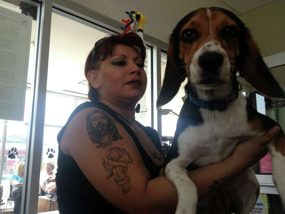 A woman brings a beagle into the ACS intake room.  Photo: Sarah Tressler/San Antonio Express-News