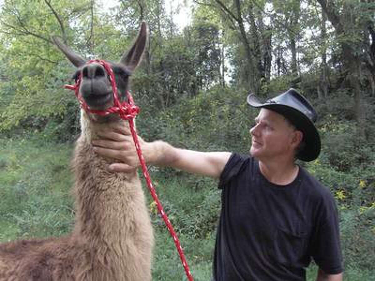 Turtleman has found Mama Llama and gets her home safely.