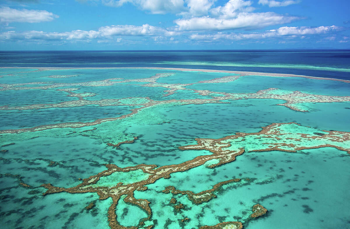 """Australia: Great Barrier Reef """"The Great Barrier Reef is a site of remarkable variety and beauty on the north-east coast of Australia. It contains the world's largest collection of coral reefs, with 400 types of coral, 1,500 species of fish and 4,000 types of mollusk. It also holds great scientific interest as the habitat of species such as the dugong ('sea cow') and the large green turtle, which are threatened with extinction."""" - UNESCO"""