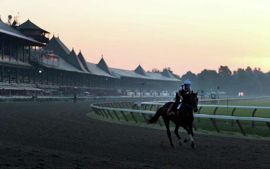 Fort Larned, last year's Whitney Stakes winner out for his morning exercise the morning of the day b
