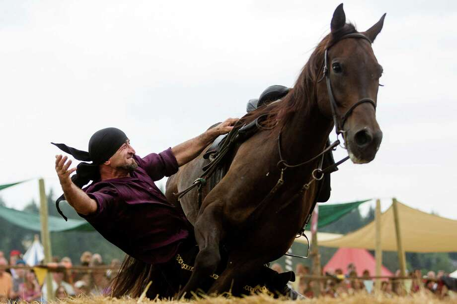 A rider from the Ma'Ceo Gypsy Horse Extravaganza presented by Cavallo Equestrian Arts dangles from his steed during The Washington Midsummer Renaissance Faire Saturday, August 3, 2013, at The Kelley Farm in Bonney Lake. The event continues August 10-11 and 17-18. Photo: JORDAN STEAD, SEATTLEPI.COM / SEATTLEPI.COM