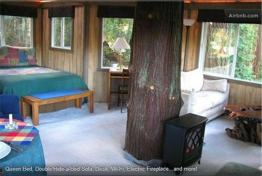 The 250-square-foot tree house features big windows, skylights, a queen bed and hide-a-bed sofa. There's a TV, fridge, microwave and Wi-Fi. Breakfast is included in the rental fee.  Photo: Ho, Vanessa, Via Airbnb