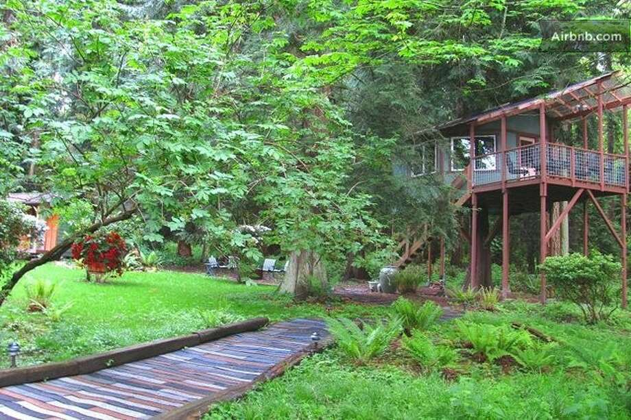 Cedars, firs and maples surround the path that leads to the tree house. Photo: Via Airbnb