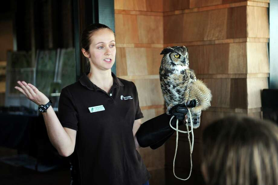 Jacque Bazelow, the animal care assistant and environmental educator holds the great owl during the New Canaan Nature Center's live bird show at the Innis Arden Cottage at Greenwich Point Park, in Greenwich, Conn., Sunday, August 4, 2013. Photo: Helen Neafsey / Greenwich Time