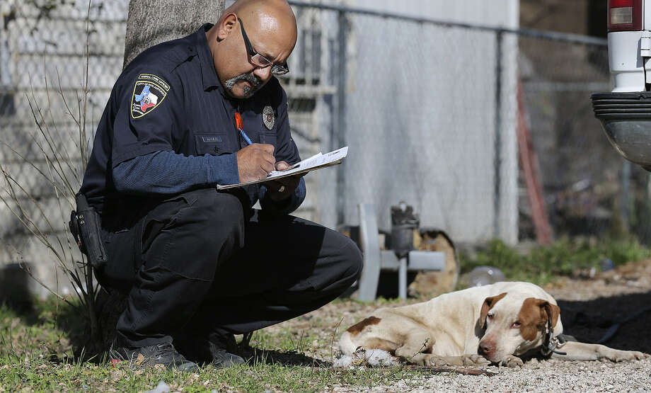San Antonio Animal Care Officer Mike Soliz takes notes at a residence in the 1500 block of Paso Hondo Street in the city's East Side. The officers were conducting a neighborhood sweep for loose and stray dogs. Photo: Jerry Lara / San Antonio Express-News