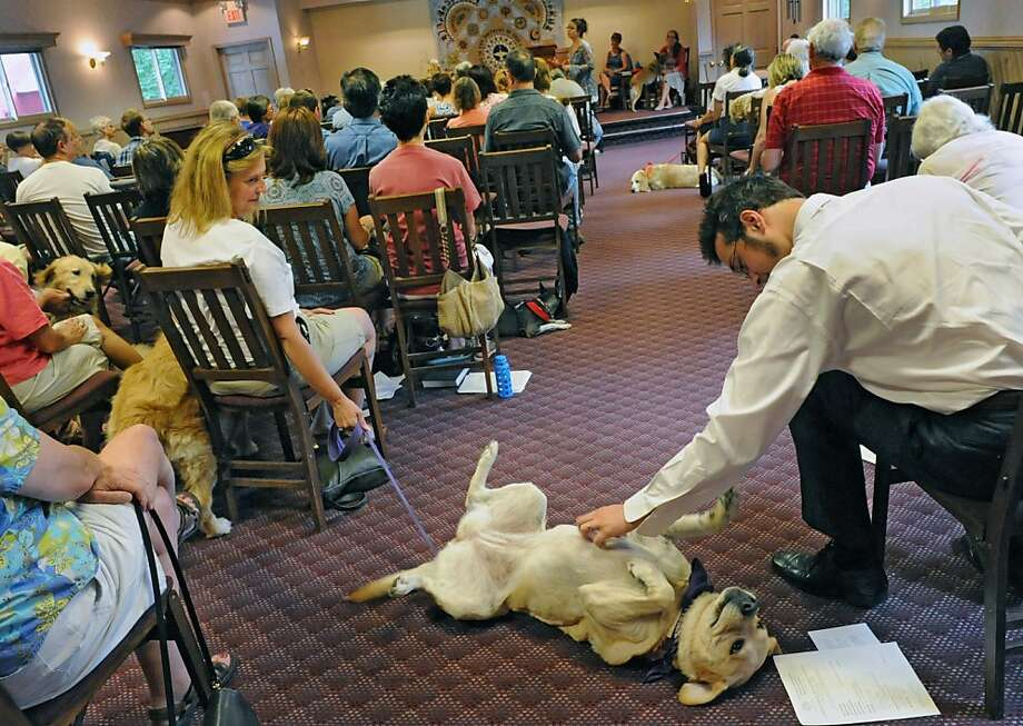I have always depended on the kindness of strangers:Madeline is more interested in 
