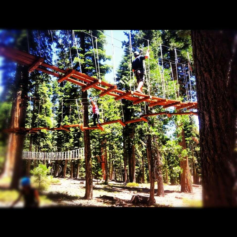Granlibakken's treetop course looks like a human habitrail.