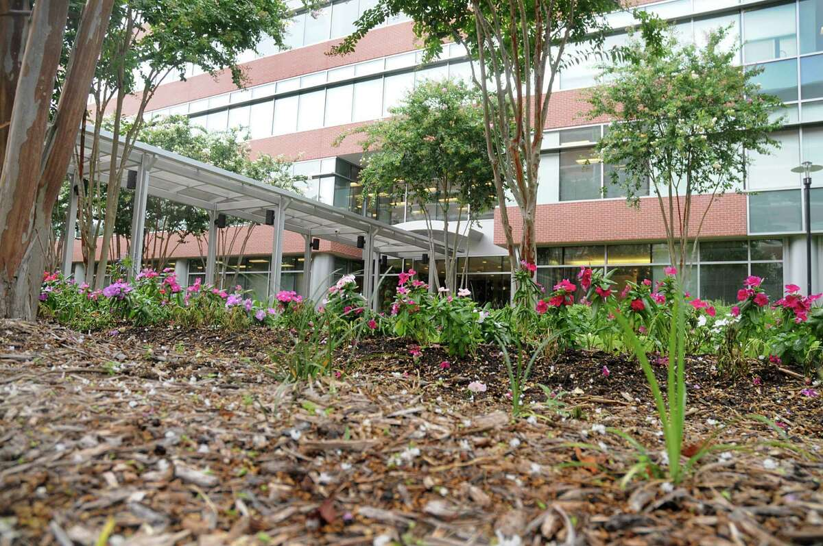 Native plants and mulch add to the green space near the entrance of McKesson Specialty Health in The Woodlands. McKesson Specialty Health recently retrofitted their building to receive LEED certification. Photo by David Hopper