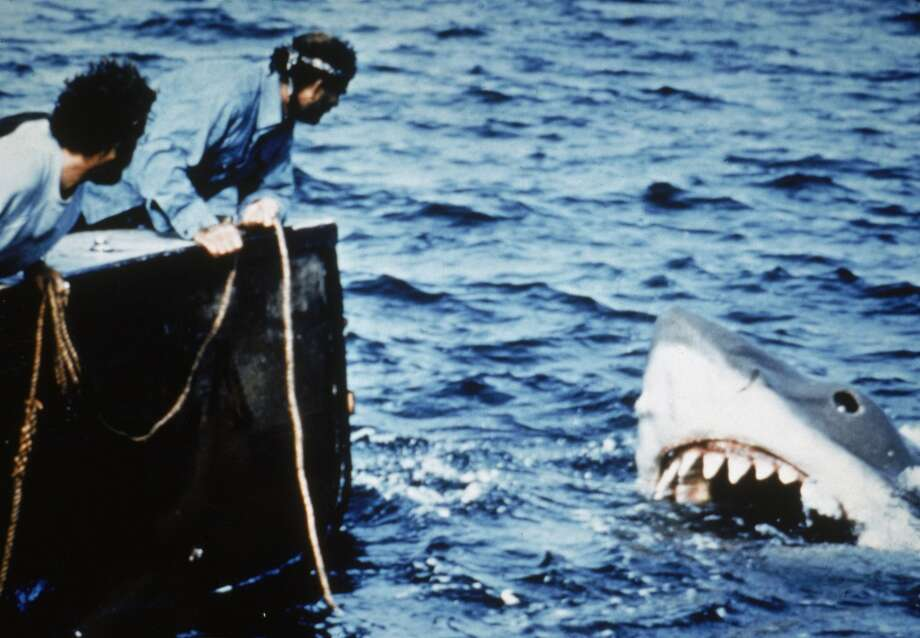 Actors Richard Dreyfuss (L) and Robert Shaw lean off the back of their boat, holding ropes as they watch the giant Great White shark emerge from the water in a still from the film, 'Jaws,' directed by Steven Spielberg. (Photo by Universal Pictures/Courtesy of Getty Images) Photo: Getty Images