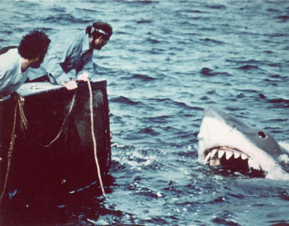 American actor Richard Dreyfuss (left) (as marine biologist Hooper) and British author and actor Robert Shaw (as shark fisherman Quint) look off the stern of Quint's fishing boat the 'Orca' at the terrifying approach of the mechanical giant shark dubbed 'Bruce' in a scene from the film 'Jaws' directed by Steven Spielberg, 1975. The movie, also starring Roy Scheider and Lorraine Gary, was one of the first 'Summer Blockbuster' films. (Photo by Universal Pictures courtesy of Getty Images) Photo: Getty Images