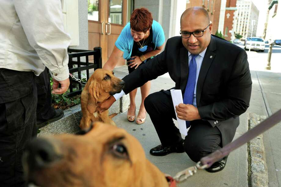 District Attorney P. David Soares, center, and Julia Cannizzaro of the Office of Court Administration, left, greet bloodhound puppies from Rensselaer County Search and Rescue before a news conference on Tuesday, Aug. 6, 2013, at the Albany County Judicial Center in Albany, N.Y. (Cindy Schultz / Times Union) Photo: Cindy Schultz / 00023427A