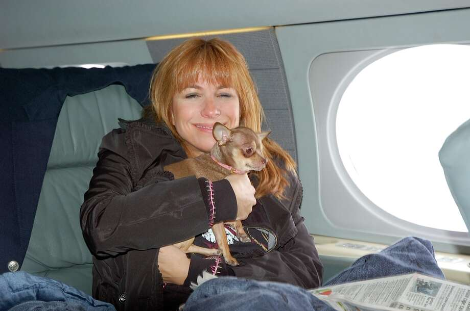 Insane pet services we don't want to buyNo travel insurance needed here. If you're rich enough, you can hire a vet to travel cross-country with you, and take care of your sick pet while in the air.  Photo: Courtesy Jill Zarin
