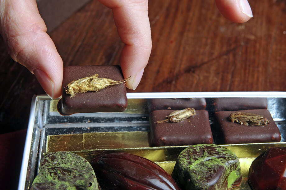 "Maybe the French are among the relatively few Westerners who aren't ""freaked out"" about bugs as food. These chocolates by French company Micronutris, are adorned with ""high-quality food insects"" that were fed with organic food. They're pictured in 2012.  Photo: AFP, - / 2013 AFP"