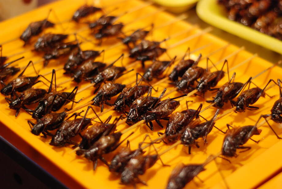 Deep-fried grasshoppers, at the Wangfujing Night Market in Beijing.  Photo: M.Simmons, - / Flickr RF