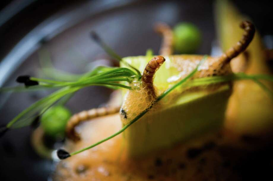 """Another bug dish from French restaurant Aphrodite: """"Petit pois, carre et son ecume de carottes, vers de farine."""" That's peas, carrots and worms with carrot foam, prepared by chef David Faure on May 2, 2013.  Photo: Didier Baverel, - / 2013 Didier Baverel"""