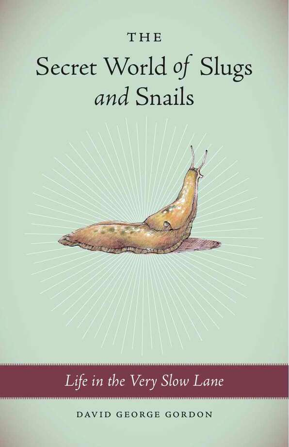 "David George Gordon's book, ""The Secret World of Slugs and Snails: Life in the Very Slow Lane,"" covered everything from snail sex to the properties of slime. It's beautifully illustrated by Gordon's wife, artist Karen Luke Fildes. Photo: -"