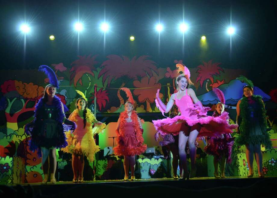 Kirsten Liniger, right, playing Mayzie, twirls her dress while dancing with the birds during the dress rehearsal of Seussical at Newtown High School in Newtown, Conn. on Wednesday, August 7, 2013.  The performance, presented by the 1214 Foundation, features Broadway actor John Tartaglia and over 80 students from the Newtown area.  Shows will be Friday, Aug. 9 at 7 p.m., Saturday at 2 p.m. and 7 p.m., and Sunday at 2 p.m. Photo: Tyler Sizemore / The News-Times