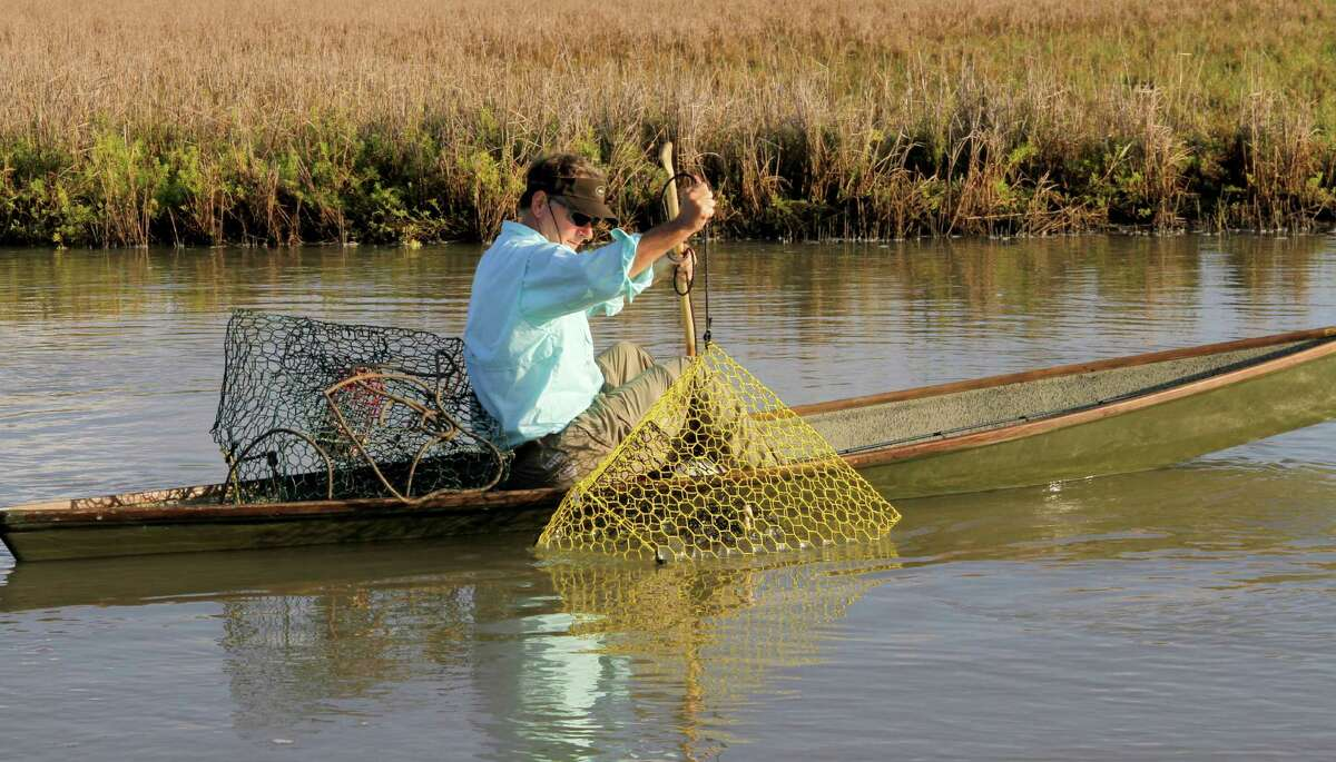 Using wire crab traps is the most effective method of catching blue crabs. Texas allows recreational crabbers to use as many as six of the traps to take the crustaceans for personal use.