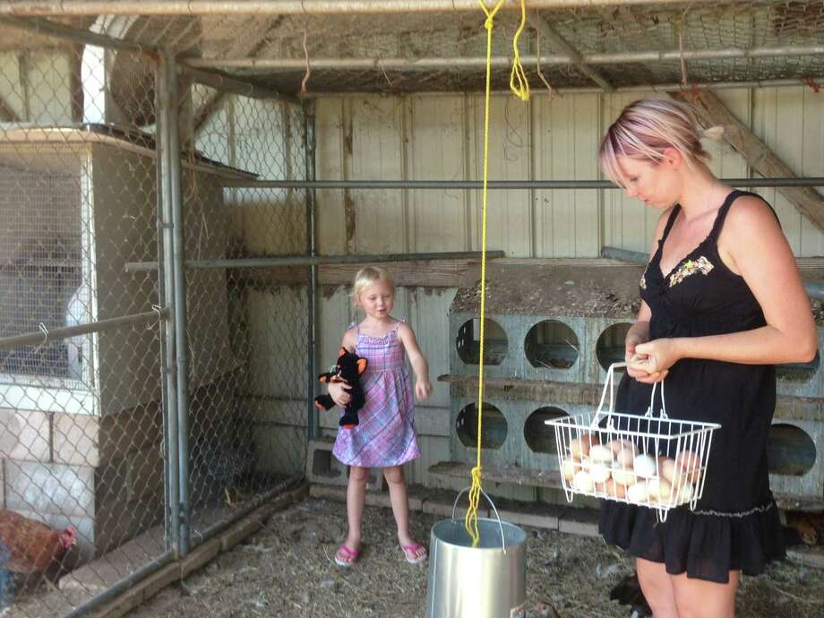 Brittany Micheli, left, and her daughter Scarlett gather eggs and feed the chickens at Miss Scarlett's Farm. The eggs will go to a farmers market, where the Michelis also sell home-grown produce and honey. Photo: Sarah Tressler/San Antonio Express-News