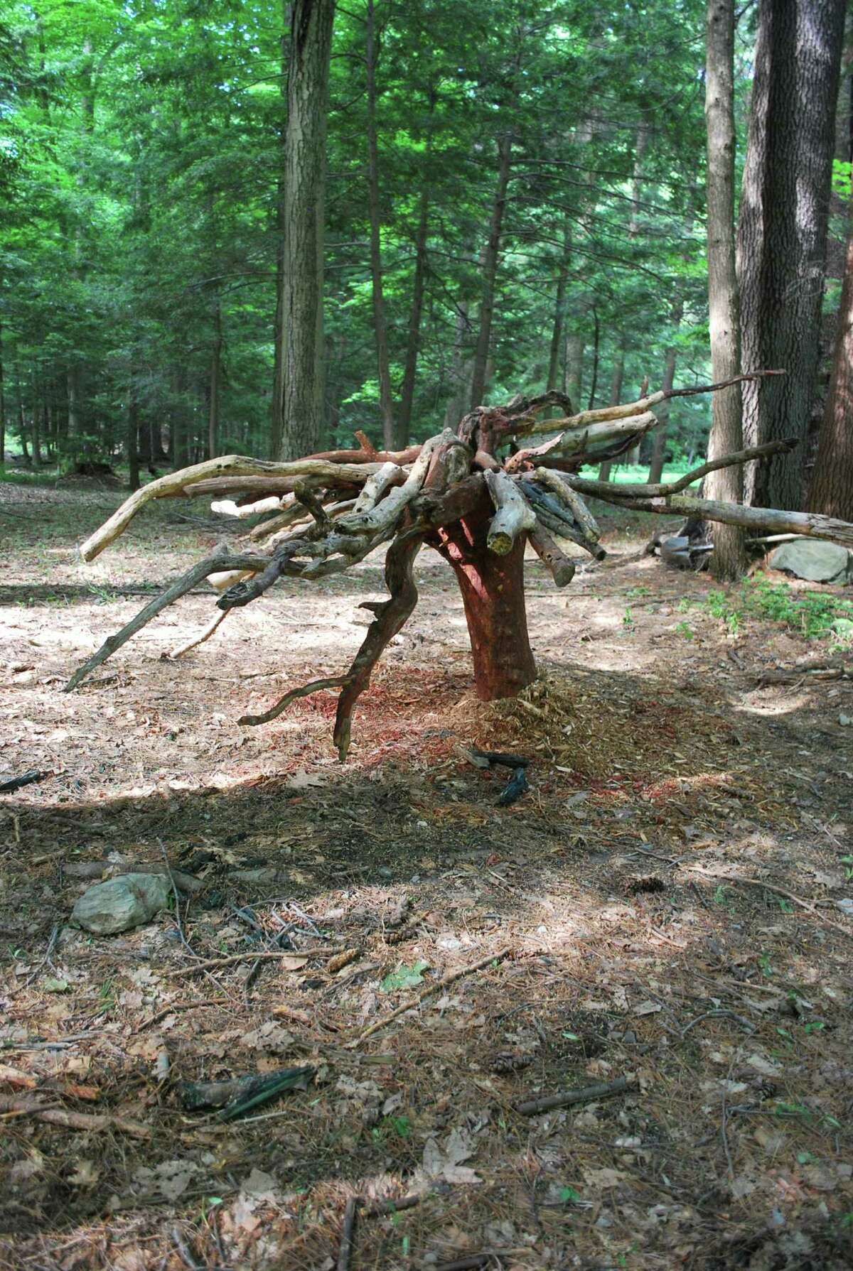 Sarah Langsam - Reversed Destruction is part of