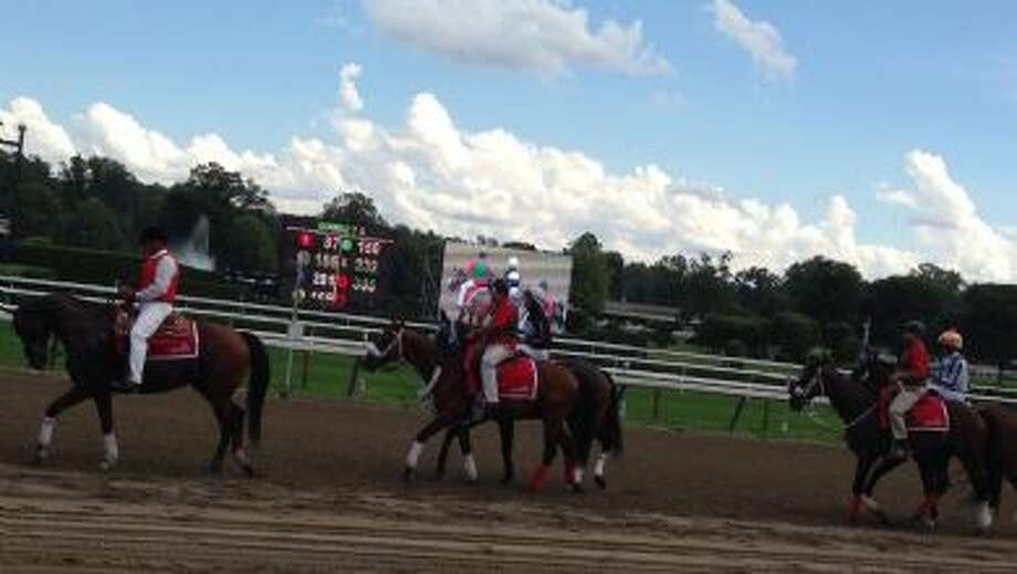 Saratoga Flat Track, Friday, August 2nd, 2013. Before 7th race on a beautiful day. (Kerri Yarter)