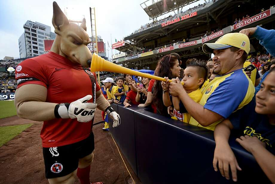 The desperate attempts of a young fan to ward off 'Xolo Mayor,' steroid chihuahua mascot of the Tijuana Xolos, were unsuccessful and the boy was later consumed in a protein shake. Photo: Andy Hayt, Getty Images
