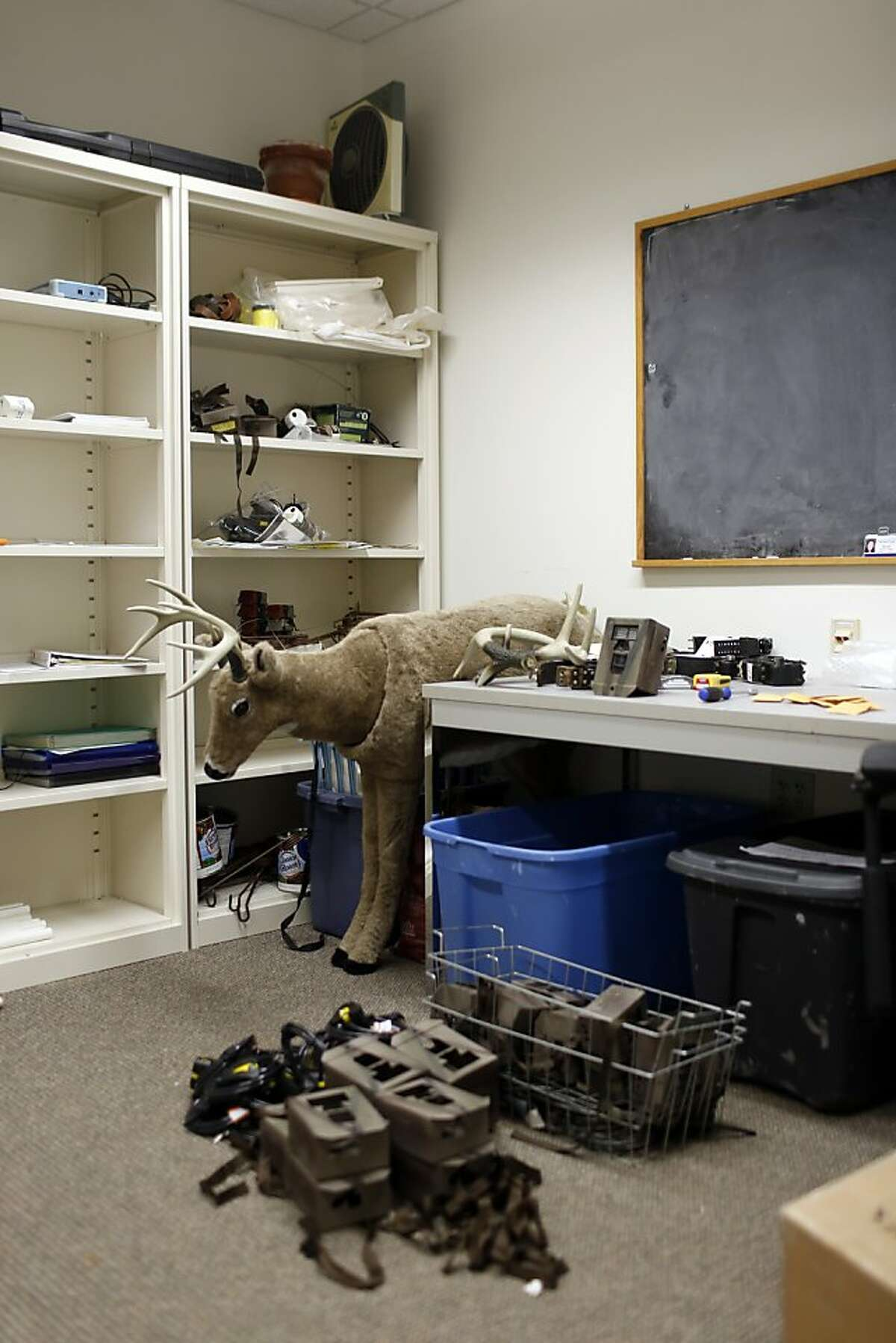 University of California Santa Cruz Associate Professor of Environmental Studies Chris Wilmer workroom filled with tools used to observe and track mountain lions on the UCSC campus in Santa Cruz, Calif. on June 24, 2013.