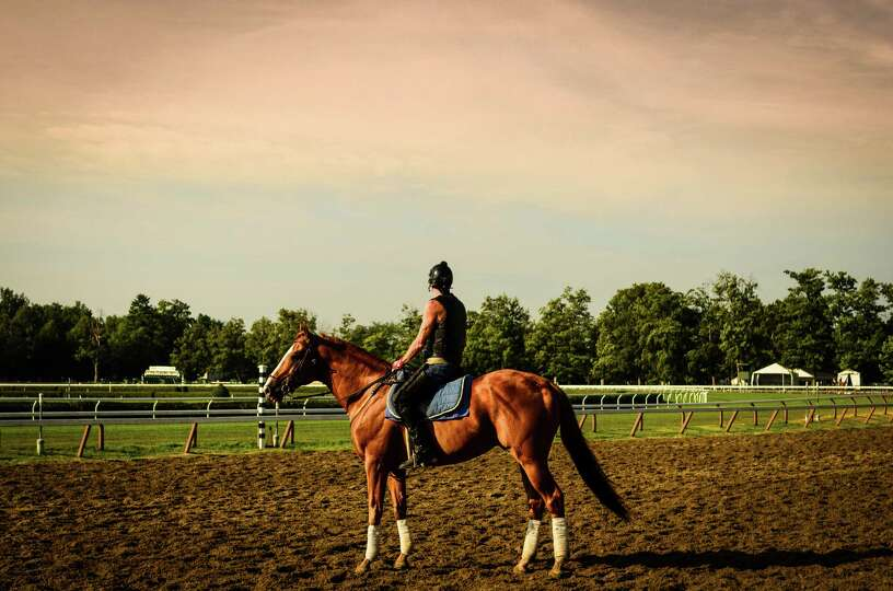 Philip Yin's photograph of a day at the Saratoga Race Course, which he calls Gallant Horse and His J