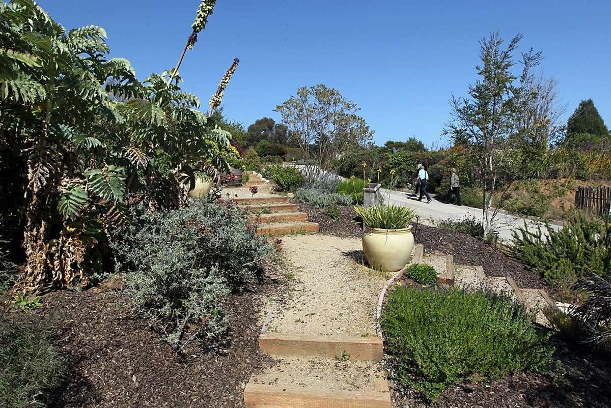Visitors to UC Santa Cruz Arboretum pass the Aroma Garden, Tuesday, May 14, 2013 in Santa Cruz, Calif.
