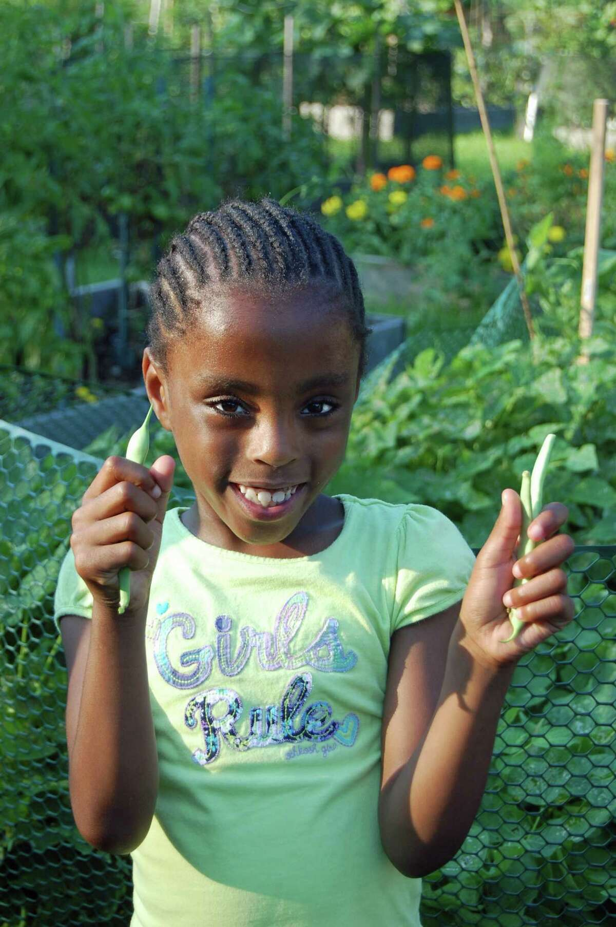 Cynthia Sailrilus, 6, shows off the string beans she just picked at the community garden at Fodor Farm in Norwalk Monday during the culmination of the Growing Gardens, Growing Health program.