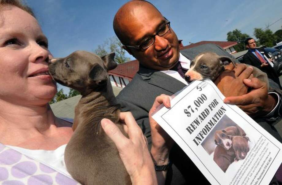 Mohawk Hudson Humane Society Director of Operations Tina Murray and Albany County District Attorney David Soares hold the two surviving puppies during a press conference at The Mohawk Hudson Humane Society in Menands, NY Friday Sept. 14, 2012. (Michael P. Farrell/Times Union)