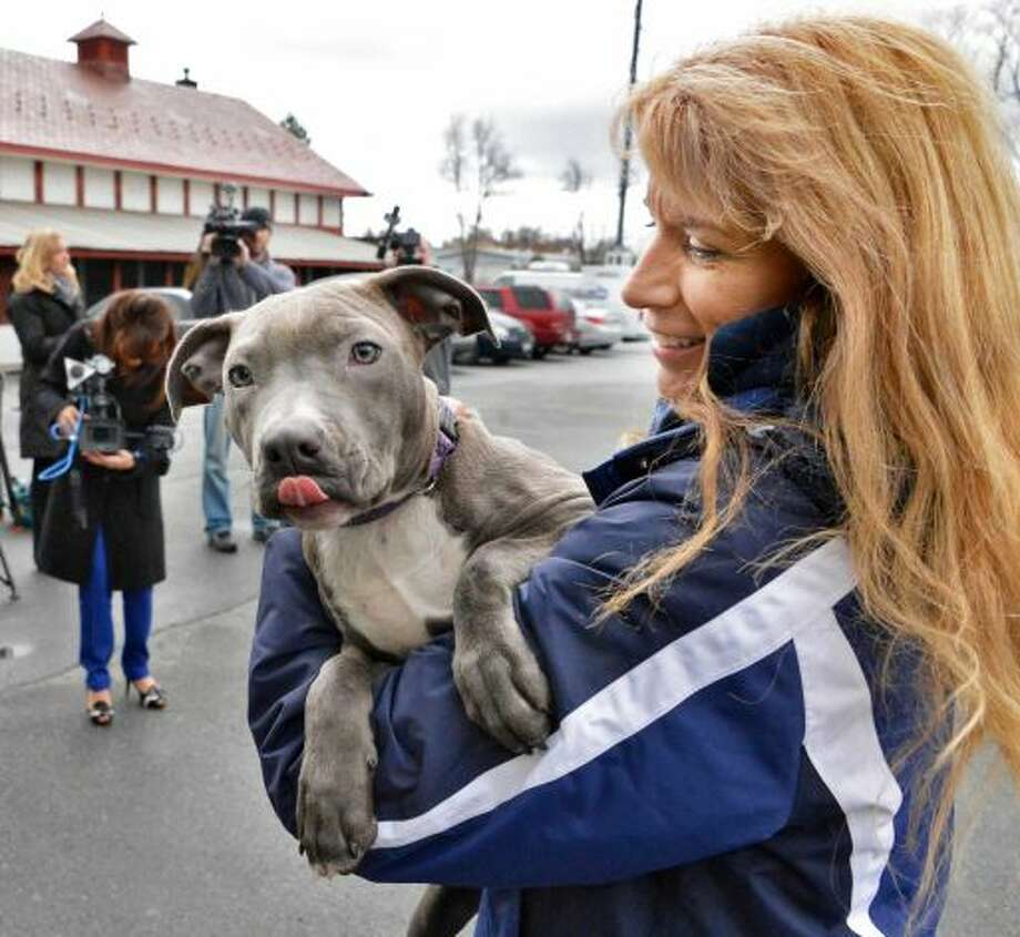 "Volunteer Deb Wagner of Averill Park carries ""Hudson"", one of the puppies found injured by train tracks, into the Mohawk Hudson Humane Society in Menands to meet his new adopted family Wednesday Dec. 5, 2012. (John Carl D'Annibale / Times Union)"