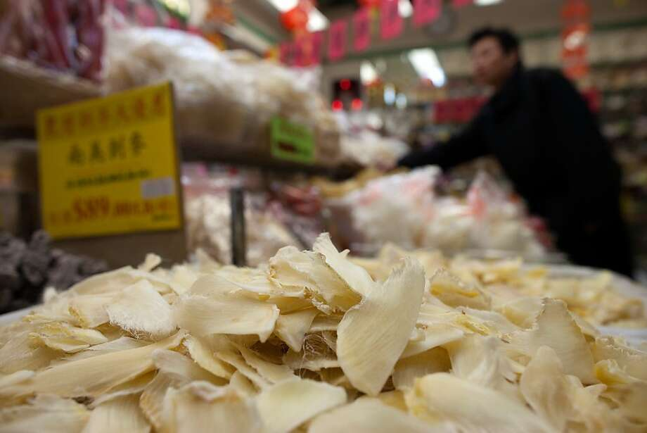 Shark fins were on sale in 2011 at the Stockton Seafood Center in Chinatown. Photo: David Paul Morris, Special To The Chronicle