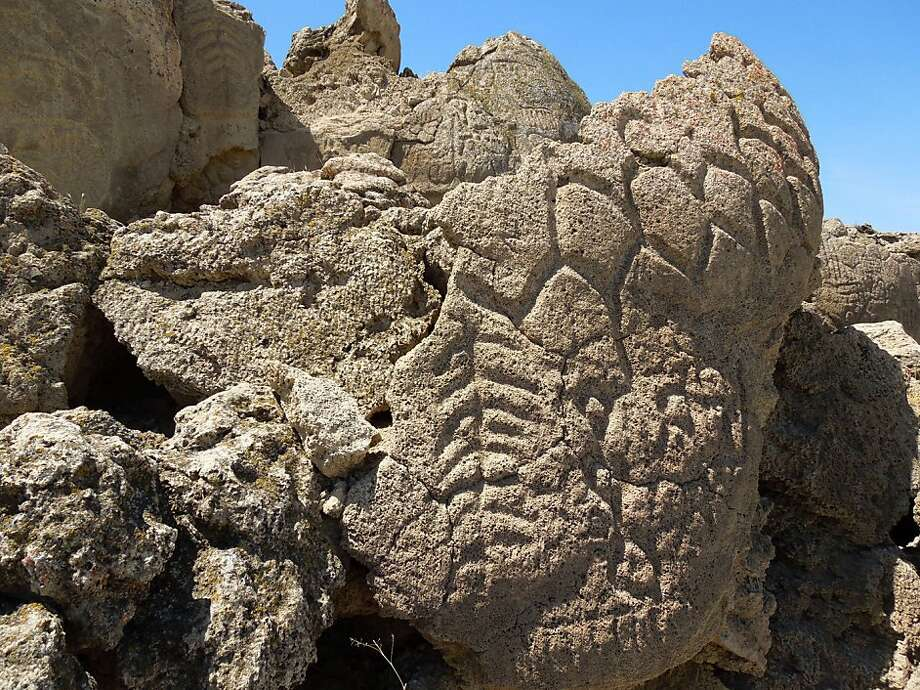Ancient carvings on limestone boulders in Nevada's high desert have been confirmed to be at least 10,500 years old. Photo: Larry Benson, Associated Press
