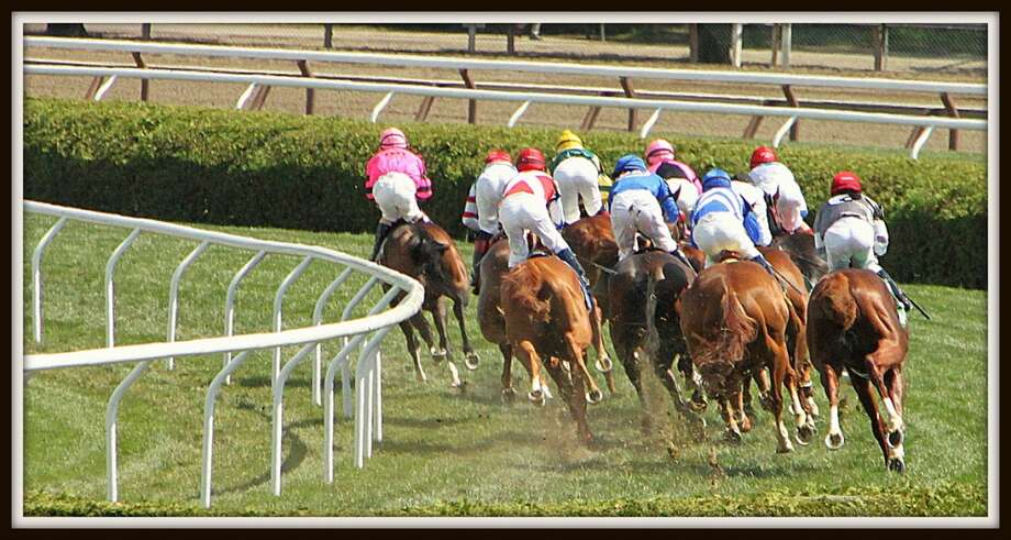 "race #4 8-12-13 second turn on the turf ""a different view"" (Jim Gold) Photo: Picasa"