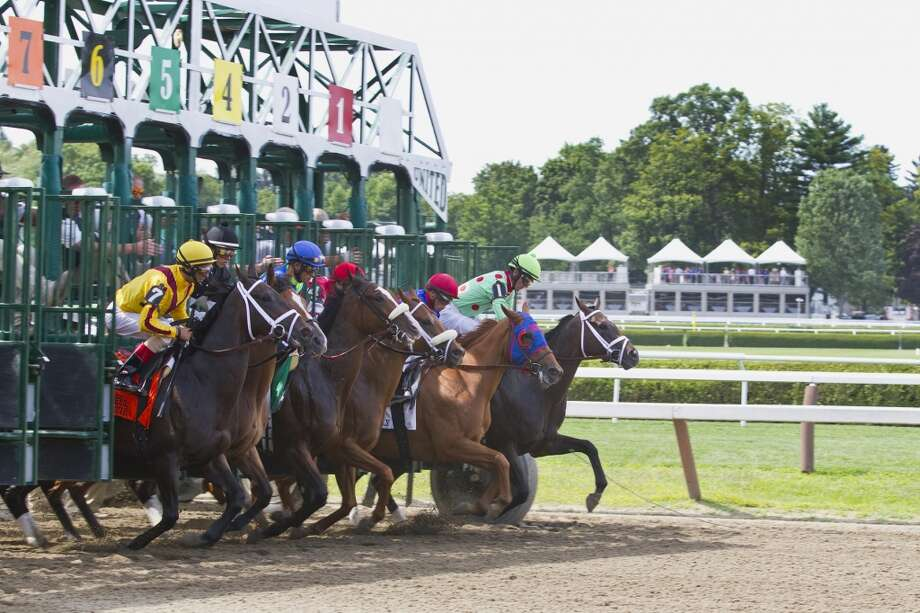 Photo was taken on July 27, view from the back-stretch at the main Saratoga track.  (Debbie Krohl)