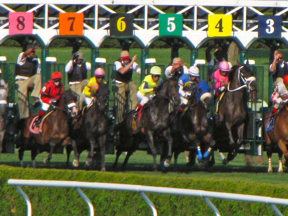 Birchwood Road (#6) breaking out of the gate! (Karen Casey)