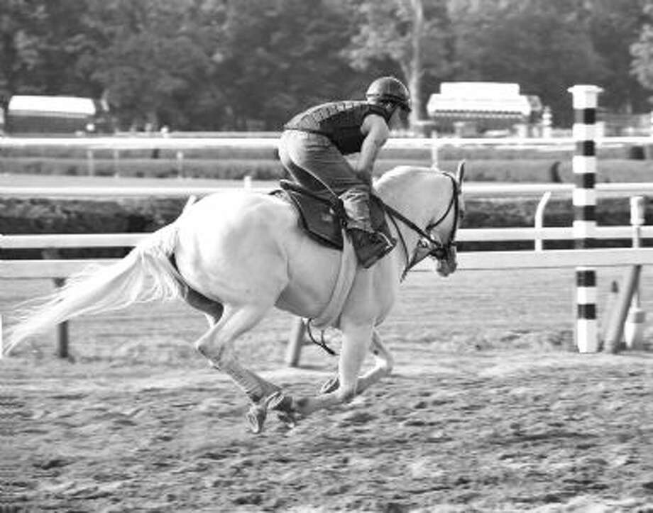 Rare White Thoroughbred in training on opening day. (George Zilberman)