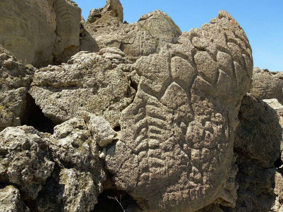 """Unlike later drawings that sometimes depict a spear or antelope, the Nevada carvings are abstract, with tightly clustered geometric designs. Some feature """"tree-form designs."""" Photo: Associated Press"""