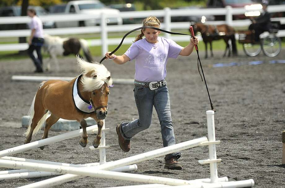 High hurdles for a short horse: Madi Shaw, 12, jumps her miniature horse during a show at Penn State Ag Progress Days in Pennsylvania Furnace, Pa. Photo: Nabil K. Mark, Associated Press