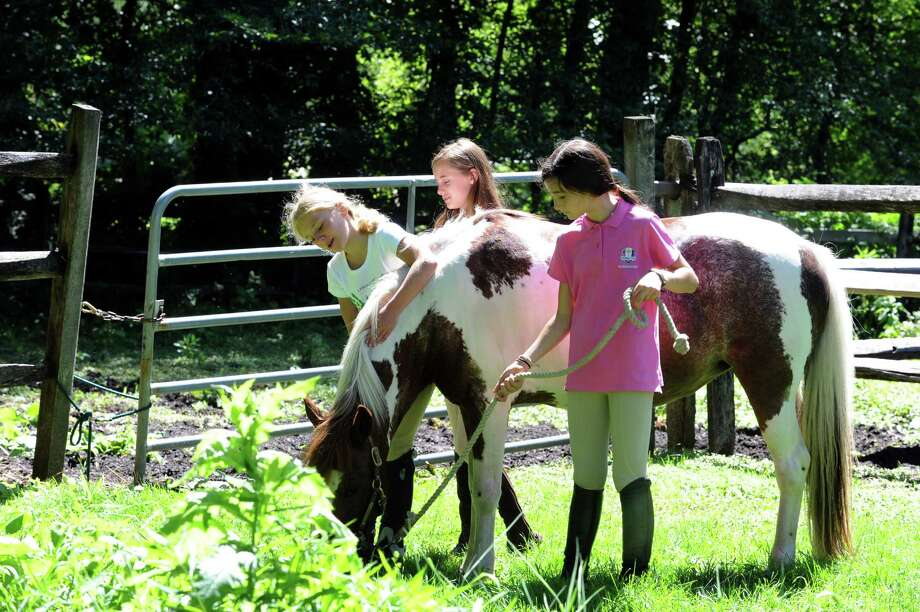 From left, Ella Peel, Layne Kiratsous and Annie Wilson pet the horse at Country Lane Farm's John Street Barn in Greenwich, Conn., Wednesday, August 14, 2013. Photo: Helen Neafsey / Greenwich Time